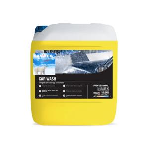 Sanitec Car Wash detergent za pranje vozil