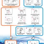 Pravilno umivanje in dezinfekcija rok